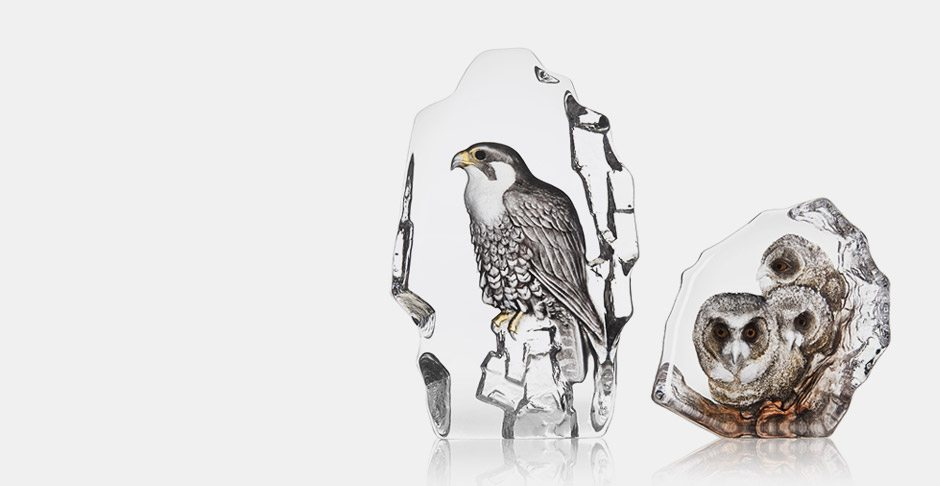 Mats Jonasson new releases – Falcon and Owlets
