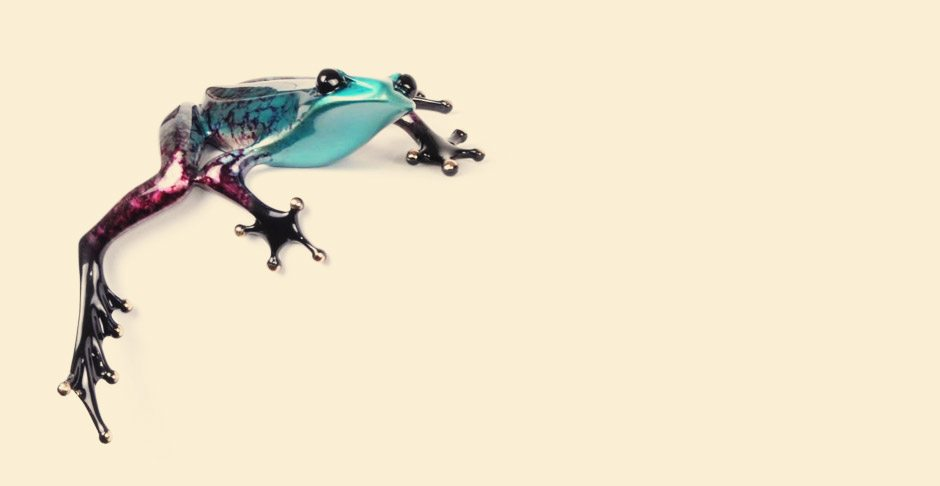 Hang On frog by the Frogman