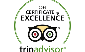 Treeby & Bolton Trip Advisor Certificate of Excellence